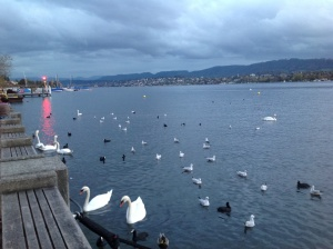 Lovely windy evening at Zurich see